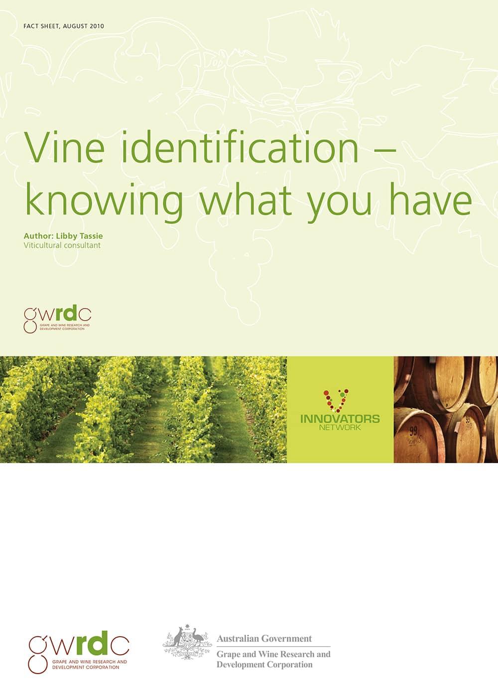Vine Identification