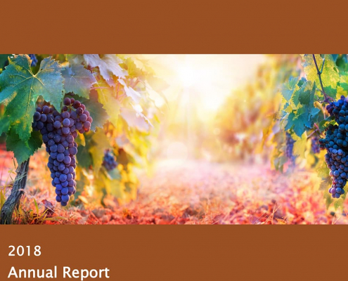 MVW IDC Annual Report 2018