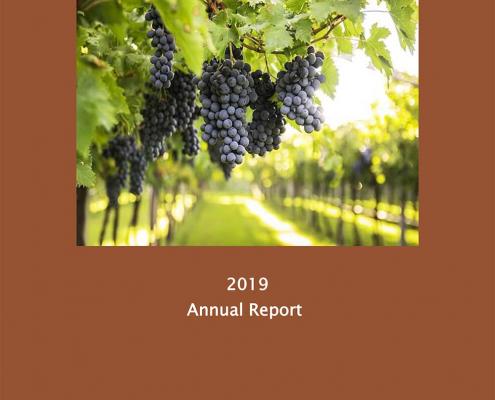 MVW IDC Annual Report 2019
