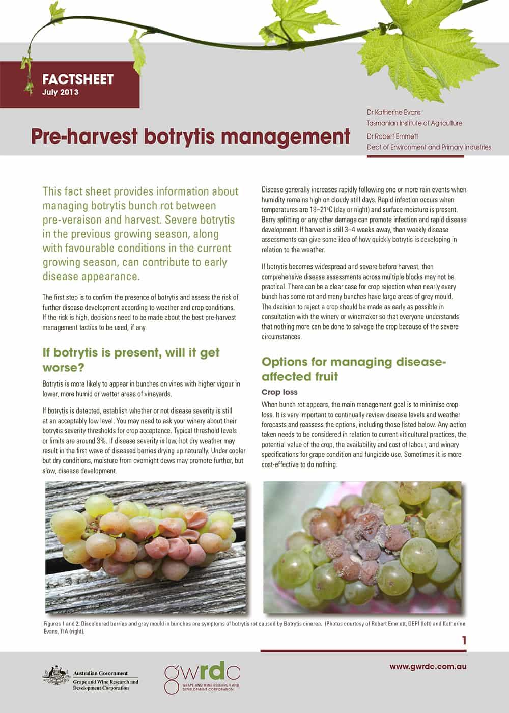 Botrytis Fact Sheet