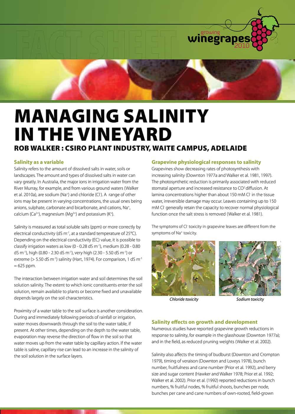 Managing Salinity in the Vineyard